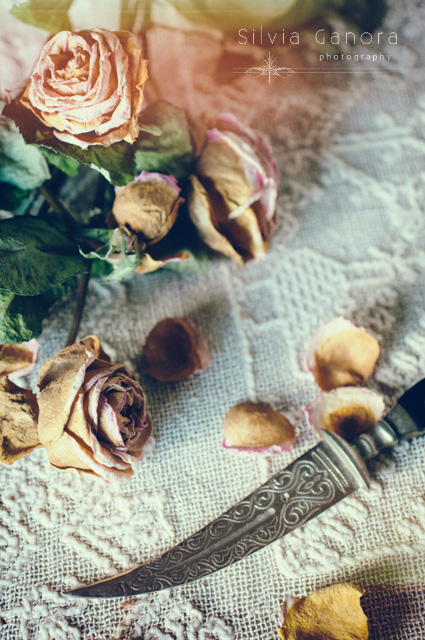 Indian dagger with wilted roses and petals- ©Silvia Ganora Photography - All Rights Reserved