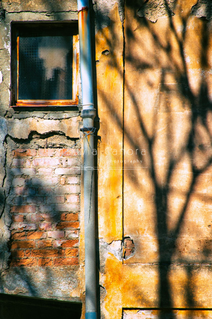 Tiny window on a decayed wall with drainpipe and tree shadow - ©Silvia Ganora Photography - All Rights Reserved