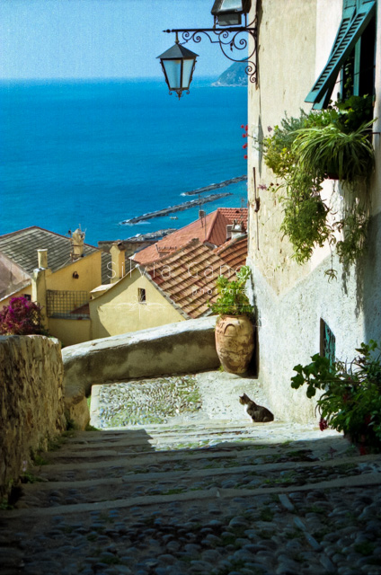 Italian stairs with kitty and Mediterranean sea in the distance- ©Silvia Ganora Photography - All Rights Reserved