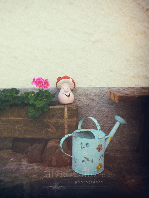 Iron watering can near wooden vase with geraniums and toy mushroom.Vintage feel and layered textures - ©Silvia Ganora Photography - All Rights Reserved