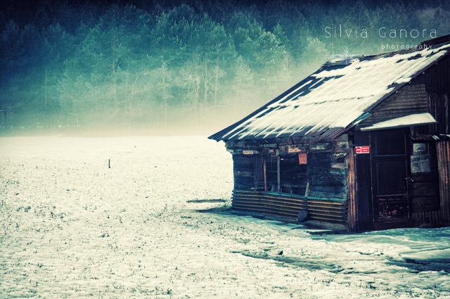 Hut in wintry landscape with mist and faraway wood- ©Silvia Ganora Photography - All Rights Reserved