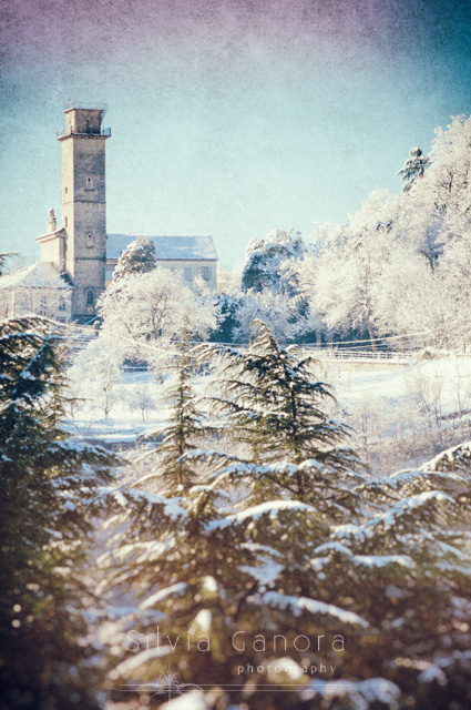 Italian wintry landscape with pine trees and house with turret- ©Silvia Ganora Photography - All Rights Reserved