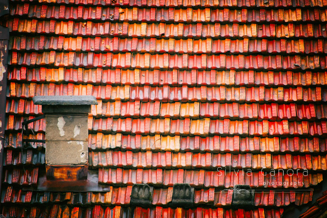 Wet roof tiles with old chimney- ©Silvia Ganora Photography - All Rights Reserved