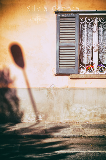 Street lamp shadow on a wall with window. Flowers vases on the windowsill.- ©Silvia Ganora Photography - All Rights Reserved