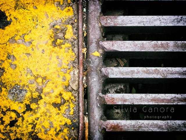 Abstract closeup shot of a manhole cover with yellow peeling paint of sidewalk- ©Silvia Ganora Photography - All Rights Reserved