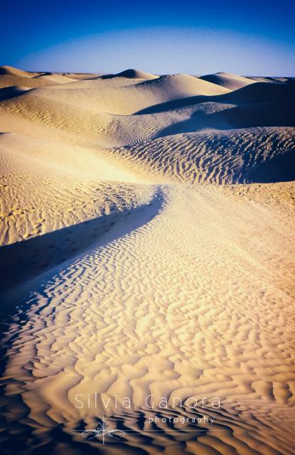 Tunisian desert dunes- ©Silvia Ganora Photography - All Rights Reserved
