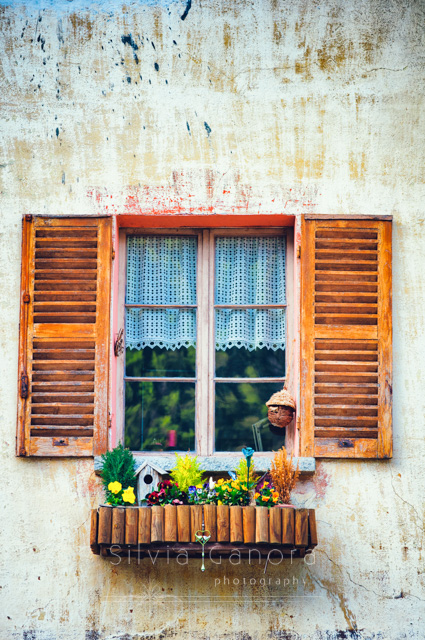 Nice window with wooden window sill with violets and bird house.- ©Silvia Ganora Photography - All Rights Reserved