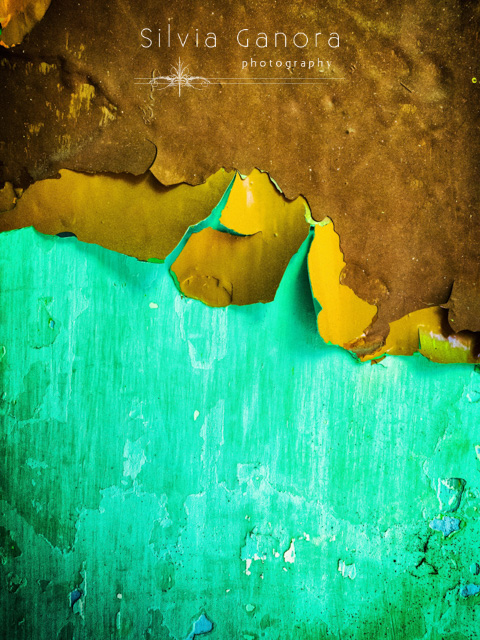 Closeup shot of a peeling wall with flakes of paint coming off- ©Silvia Ganora Photography - All Rights Reserved