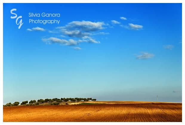 Hill - Copyright Silvia Ganora Photography
