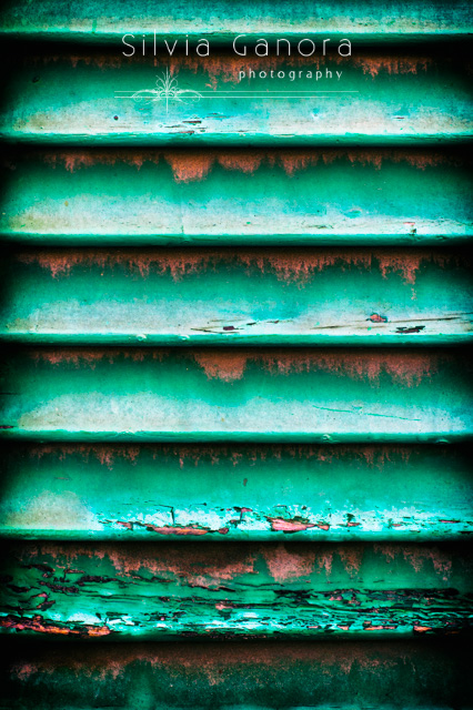 Detail of a rotten green shutter - Copyright Silvia Ganora Photography