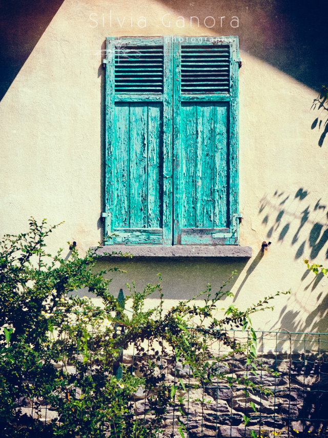 Window with rotten green shutters on a wall with shadows - Copyright Silvia Ganora Photography