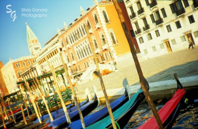 Venice gondolas - ©Silvia Ganora Photography - All Rights Reserved
