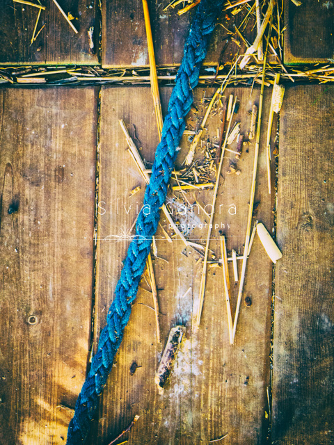 Blue rope on wooden planks with wooden debris©Silvia Ganora Photography - All rights reserved