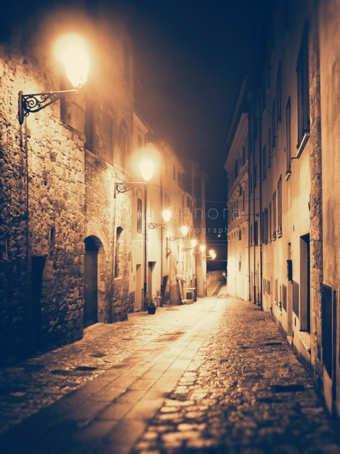 Atmospheric shot of an old Italian alley at night with street lamps©Silvia Ganora Photography - All rights reserved