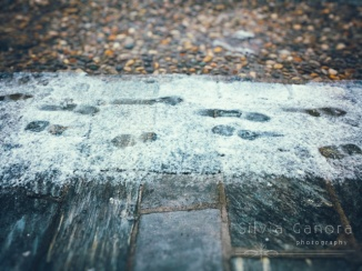Footprints in thin snow on a sidewalk ©Silvia Ganora - All rights reserved.-©Silvia Ganora Photography