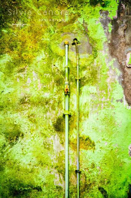 Pipes on a rotten wall©Silvia Ganora Photography - All rights reserved