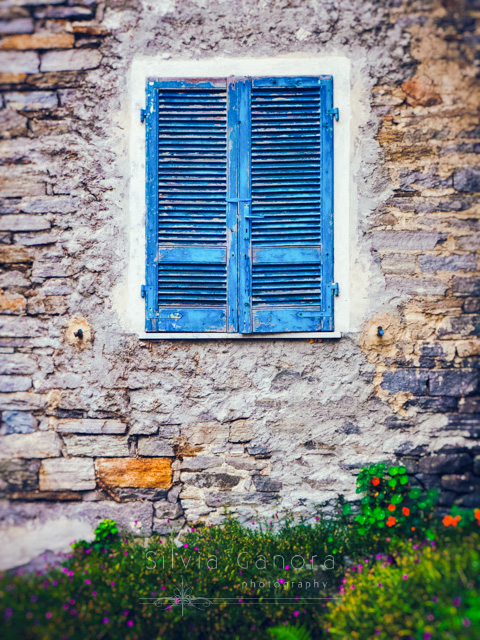 Blue shutters with flowers -